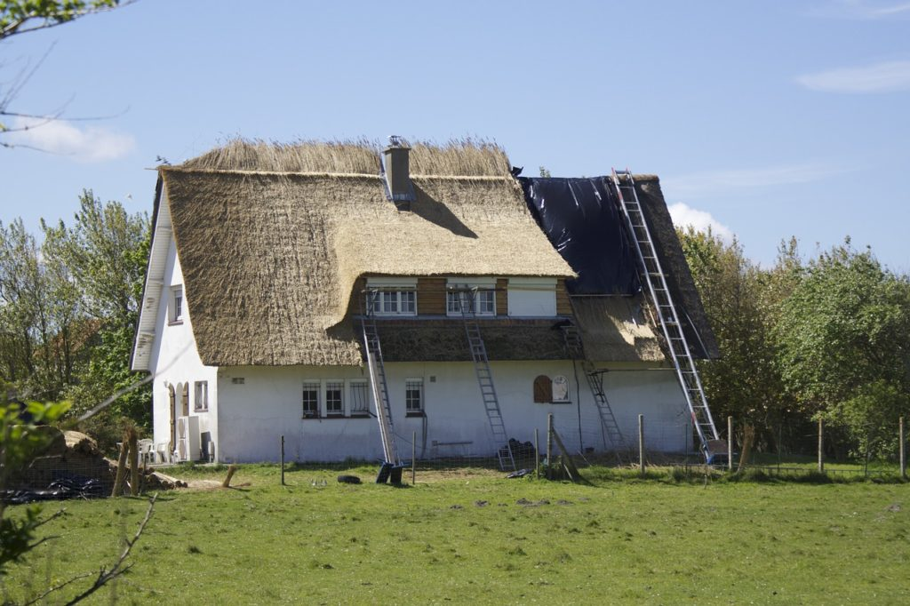 thatched-roof-1086160_1280