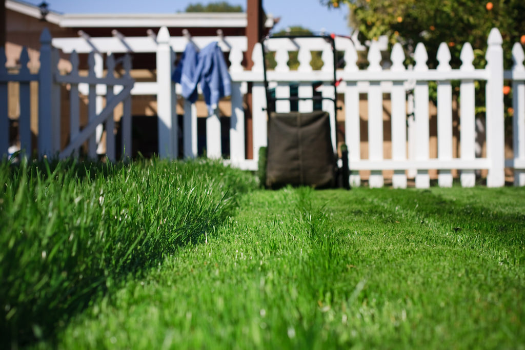 These tips for a perfect lawn will transform yours